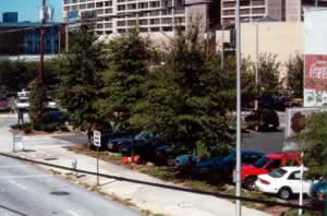 Spring Street at Nassau Street after a planting by Trees Atlanta.