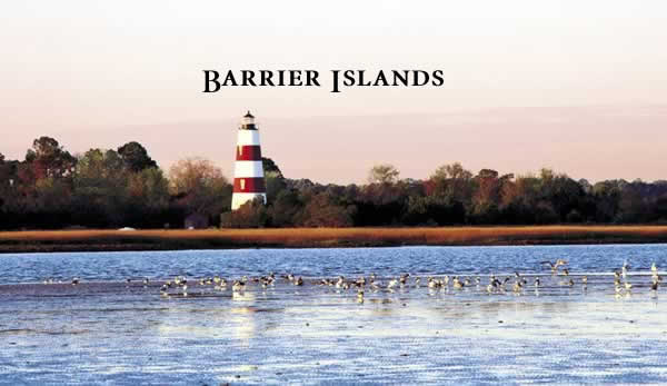 Click to read Georgia's Barrier Islands