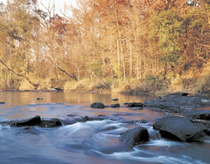Class II rapids, like these pictured at Daniel Shoals,are common to the Flint River in the fall line zone. Photo by Richard T. Bryant. Email richard_t_bryant@mindspring.com